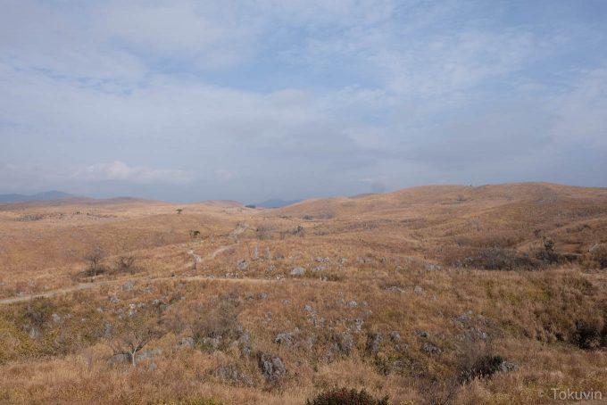 秋吉台 展望台からの景色