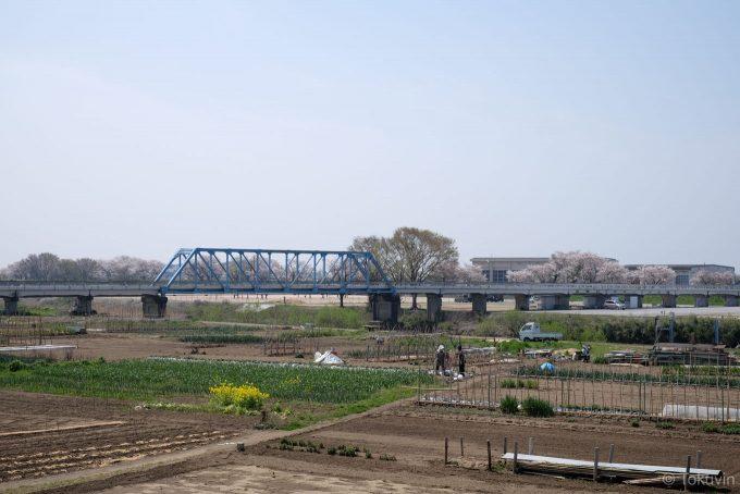 高時川にかかる福橋