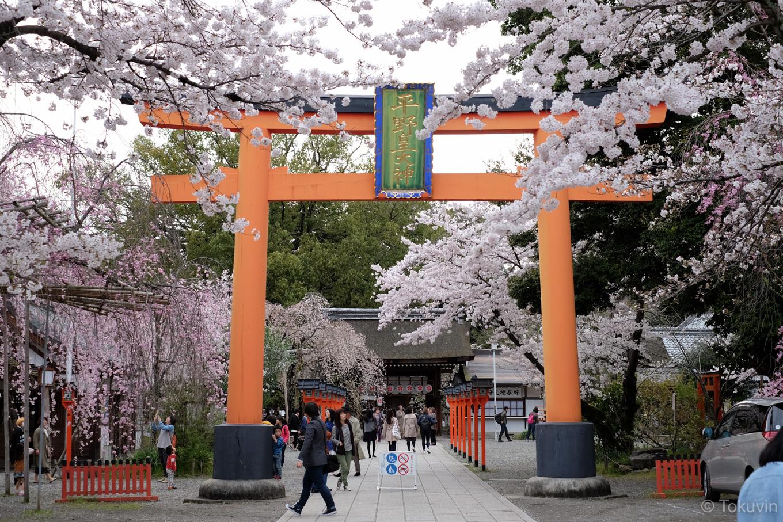 平野神社。