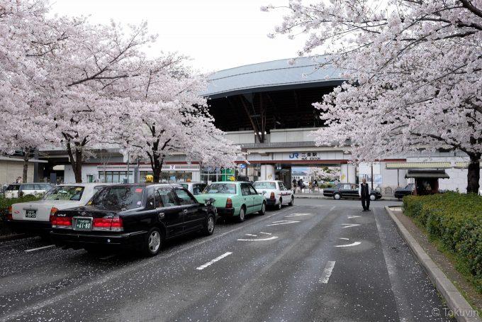 桜並木の美しい二条駅