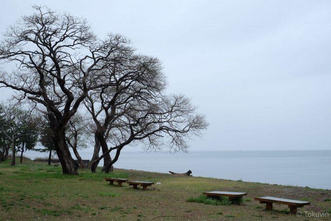 さいかち浜のベンチ