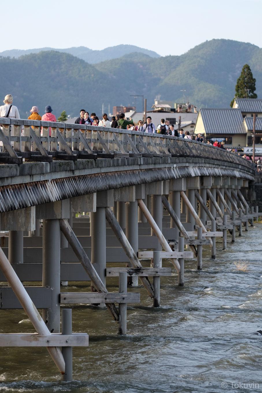 中ノ島側から見た渡月橋。