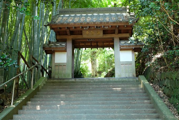 竹林脇の長谷寺山門