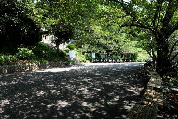 木立が模様を作る駅前広場