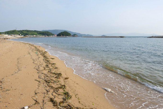 中谷海岸の砂浜