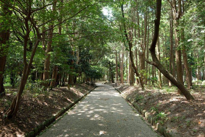 離宮院公園の歩道