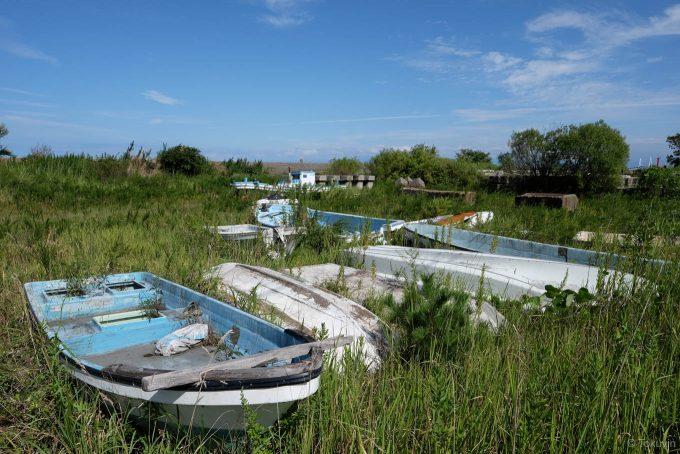 伏木港の近くの草地に転がる小舟たち