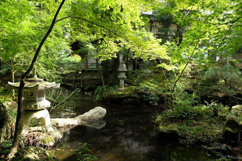 宝光寺本堂裏手の庭園。