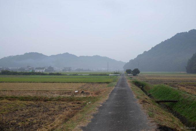 静かな田んぼ道を行く
