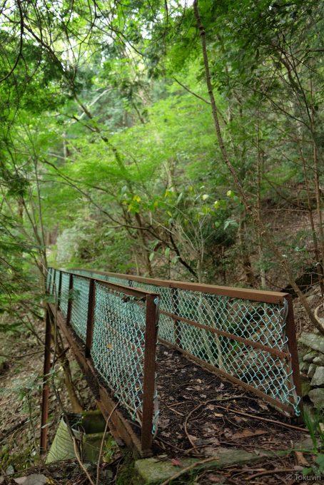 マムシの居座る小さな橋