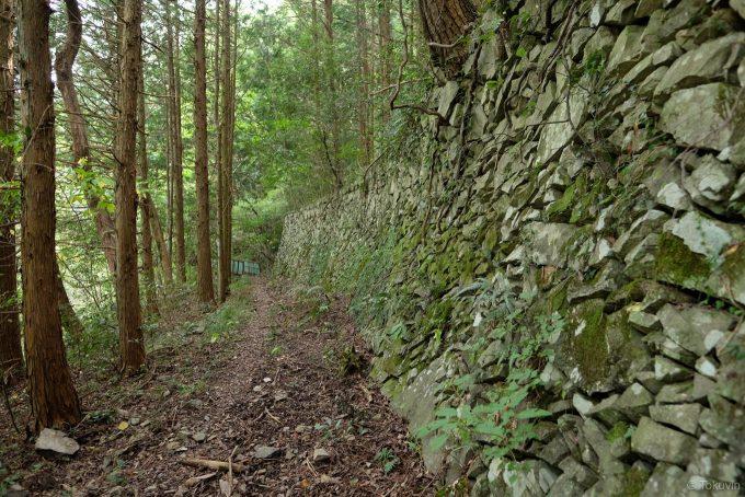 石積みの続く山道