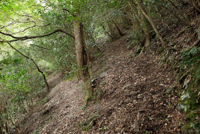 斜面と一体化した山道