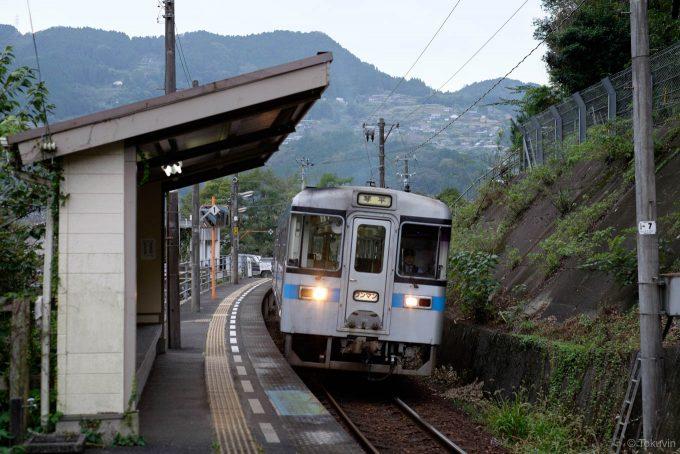 祖谷口駅に入線する琴平行き4238D