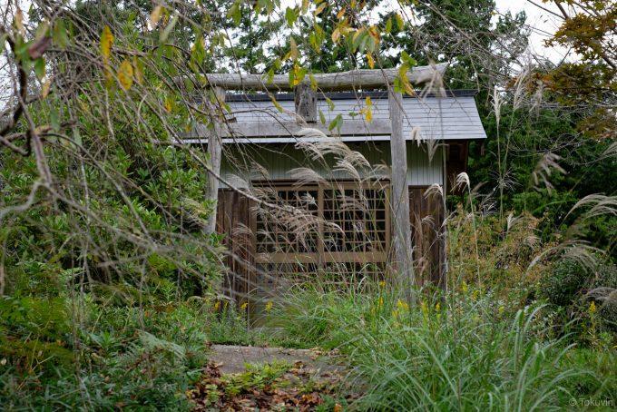 草木に埋もれる幸福神社