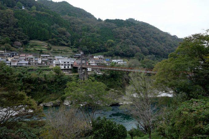 対岸から望む大川橋と祖谷口駅周辺