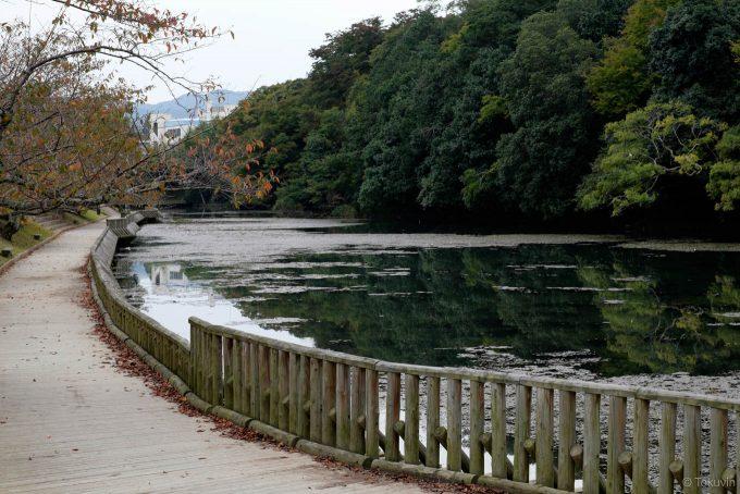 外掘り沿いの南郷公園