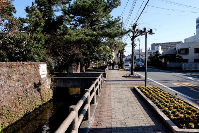 桜川沿いの道