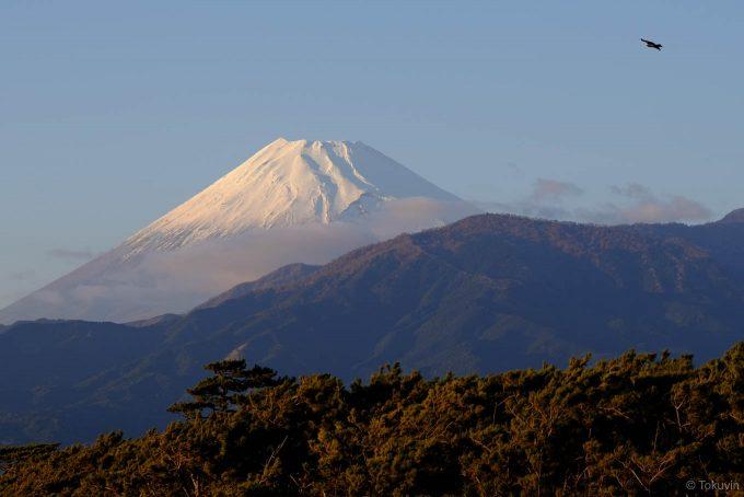背後には富士山がよく見える