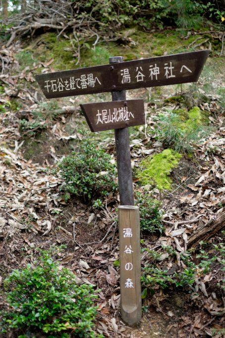 山の中の交差点