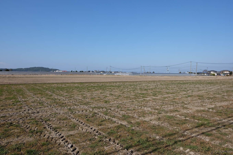 駅周辺に広がる農地。