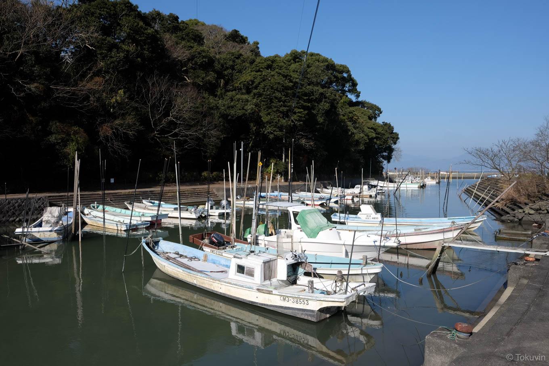 公園近くの船溜まり。