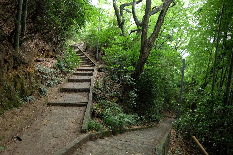八幡山の整備された歩道。