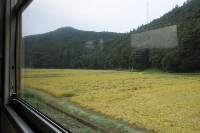車窓はすっかり黄金色 (Canon PowerShot G9 X)