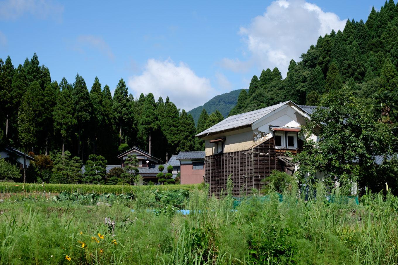 駅周辺に広がる景色。