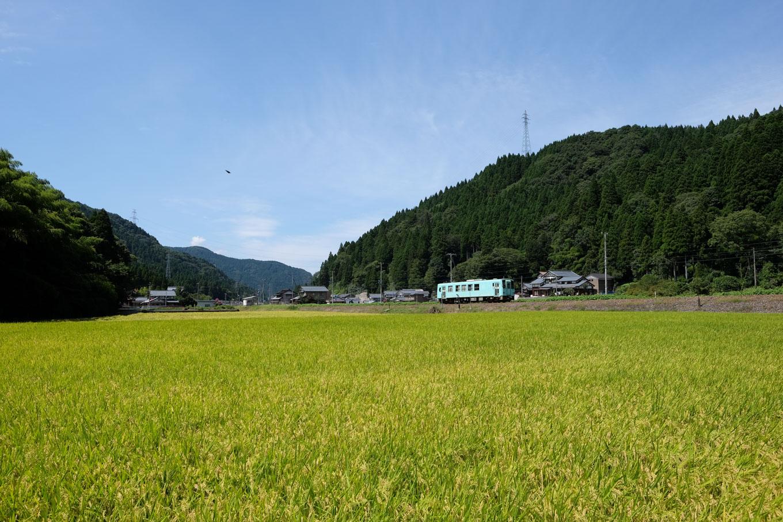 福井行き 728D。