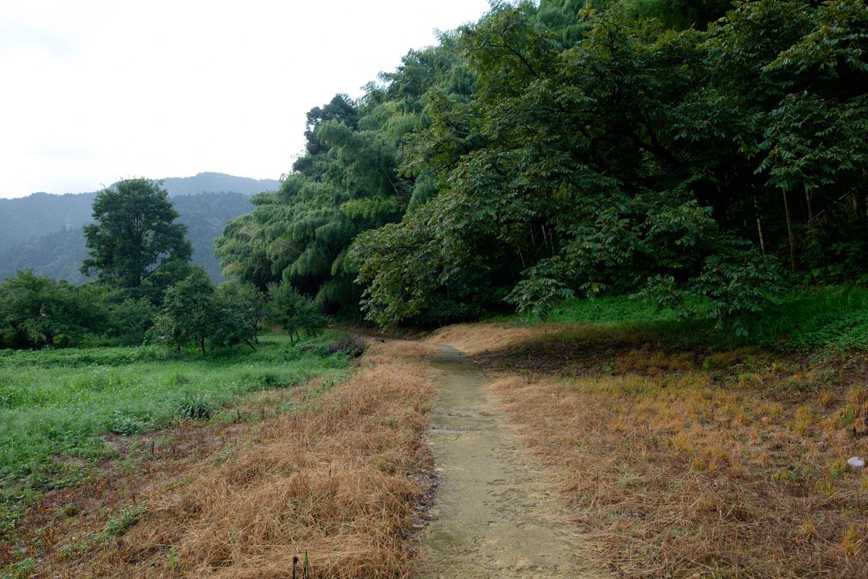 西山光照寺跡から続く歩道。