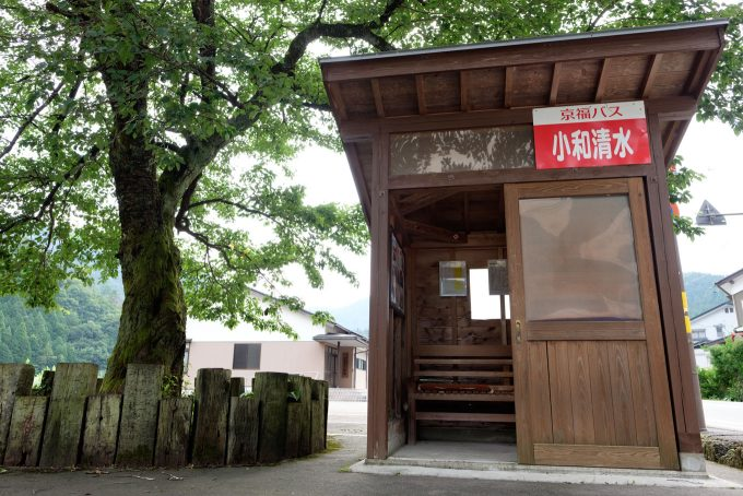 駅前のバス停と桜の木 (FUJIFILM X-T1 + XF16mm F1.4R)