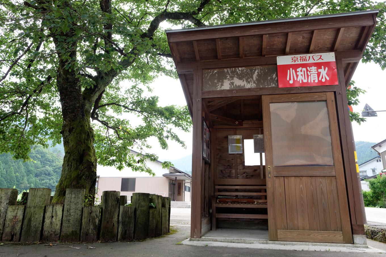 駅前のバス停と桜の木。