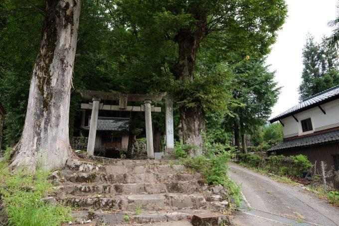 八幡神社 (FUJIFILM X-T1 + XF16mm F1.4R)