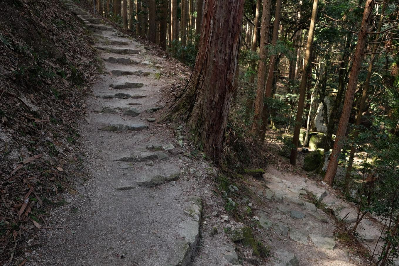 つづら折りに斜面を上がる参道。
