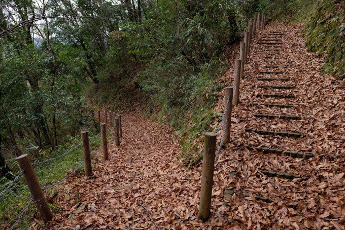 河原城に伸びる遊歩道 (FUJIFILM X-T1 + XF16mm F1.4R)