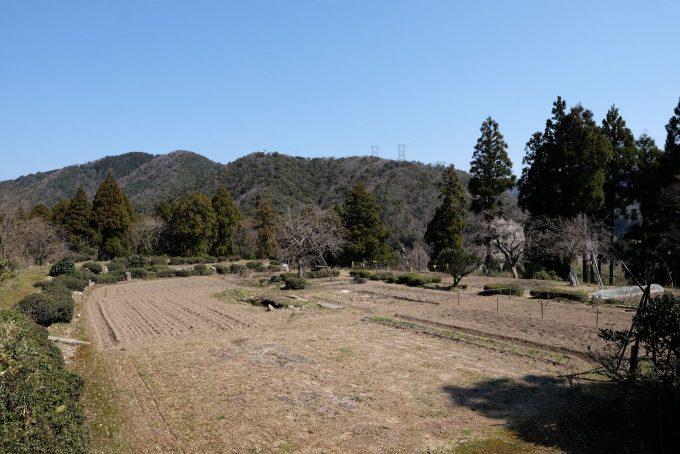 大半が畑と化した城跡 (FUJIFILM X-T1 + XF16mm F1.4R)