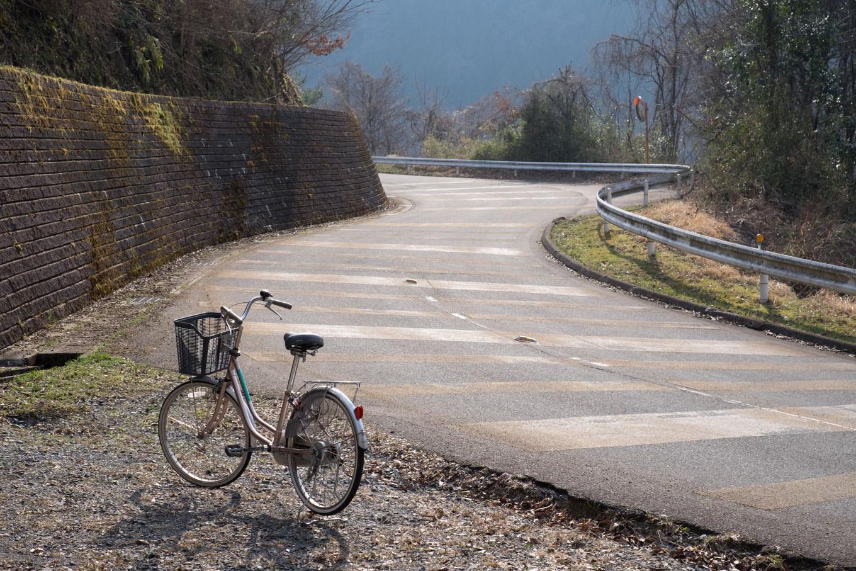 日吉ダムに向けて続く坂道。