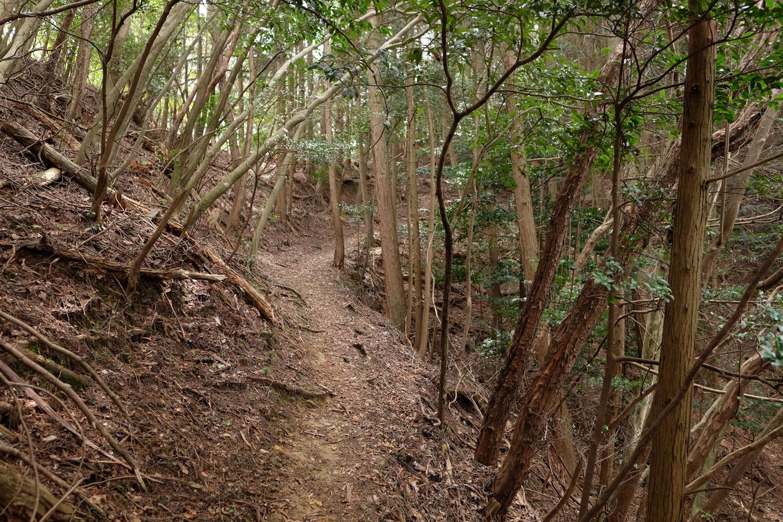 八木城跡へと続く登山道。