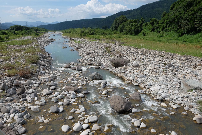 九頭竜川。