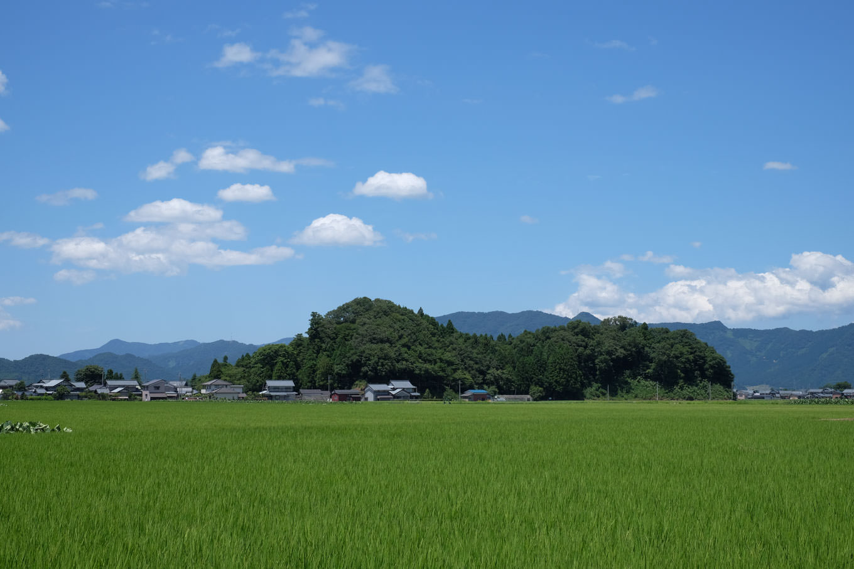 平野に浮かぶ城山。