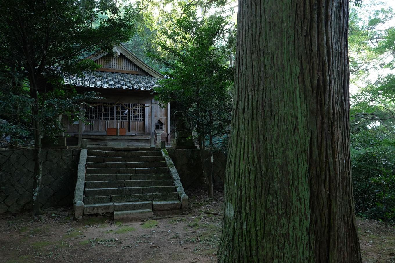 鬱蒼とした樹林に囲まれた土師神社の拝殿。