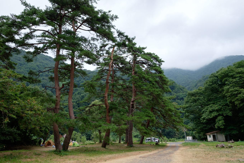 勝原園地のキャンプ場。