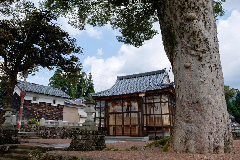 白山神社と大ケヤキ。