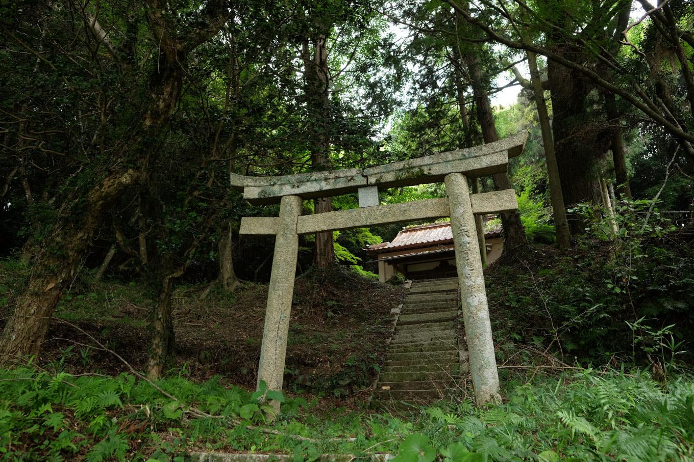 円応寺裏手にある鳥居。