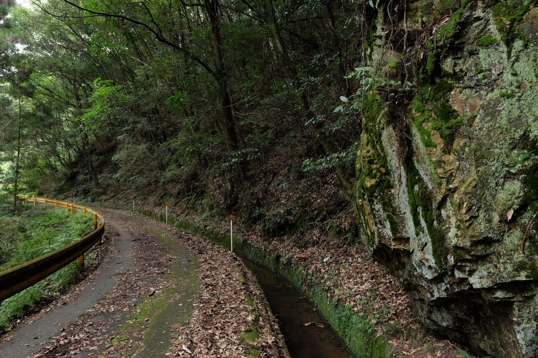 取水堰に続く水路。
