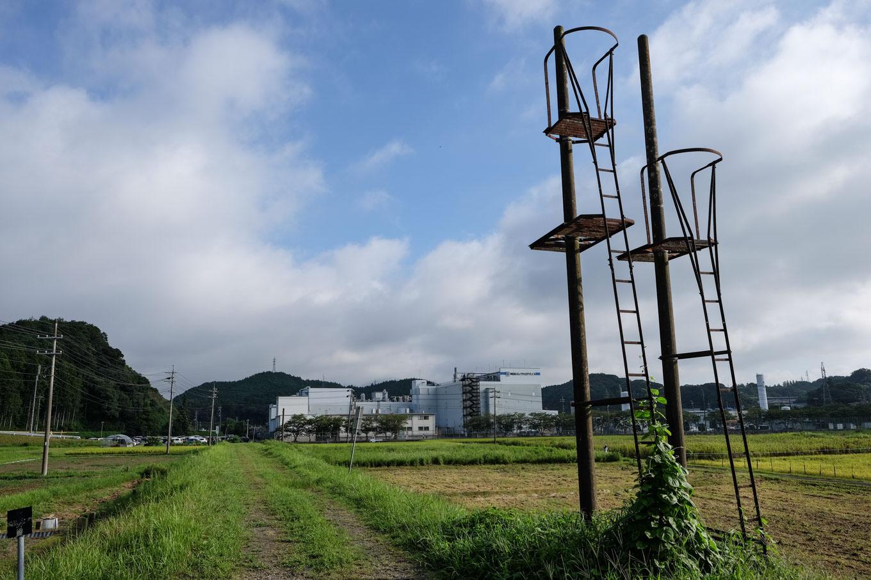 大嶺支線跡に残る信号機の支柱。