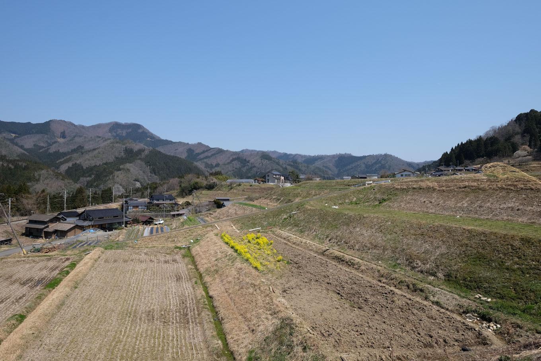 長源寺近くの傾斜地に広がる農地と、そこに点在する住宅。