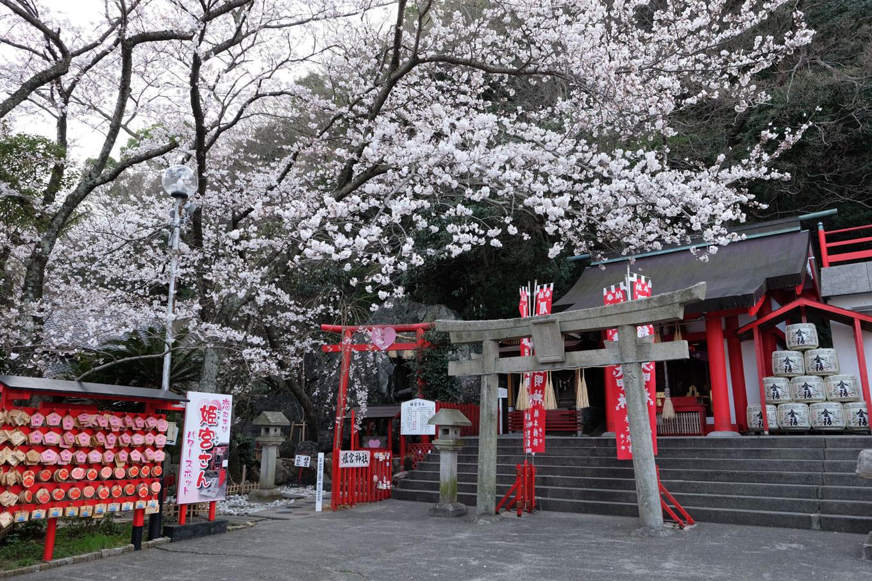 徳島眉山天神社の境内にある稲荷神社と姫宮神社。
