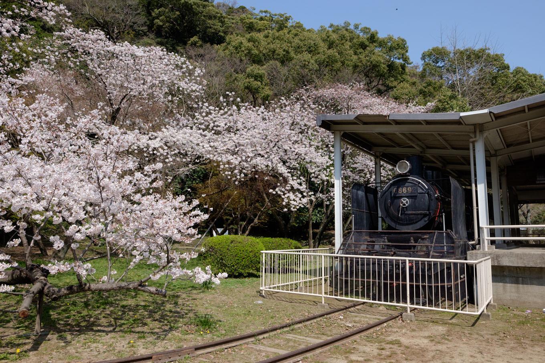 城山ふもとに保存された蒸気機関車。