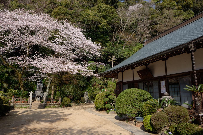 忌部神社の鳥居近くにある臨済宗妙心寺派の観潮院。